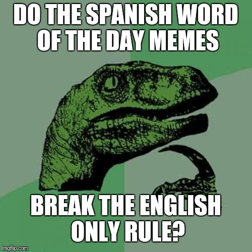 because... we wouldn't want to do that... | DO THE SPANISH WORD OF THE DAY MEMES BREAK THE ENGLISH ONLY RULE? | image tagged in memes,philosoraptor | made w/ Imgflip meme maker
