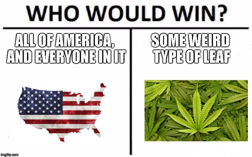 Who Would Win? Meme | ALL OF AMERICA, AND EVERYONE IN IT SOME WEIRD TYPE OF LEAF | image tagged in memes,who would win | made w/ Imgflip meme maker