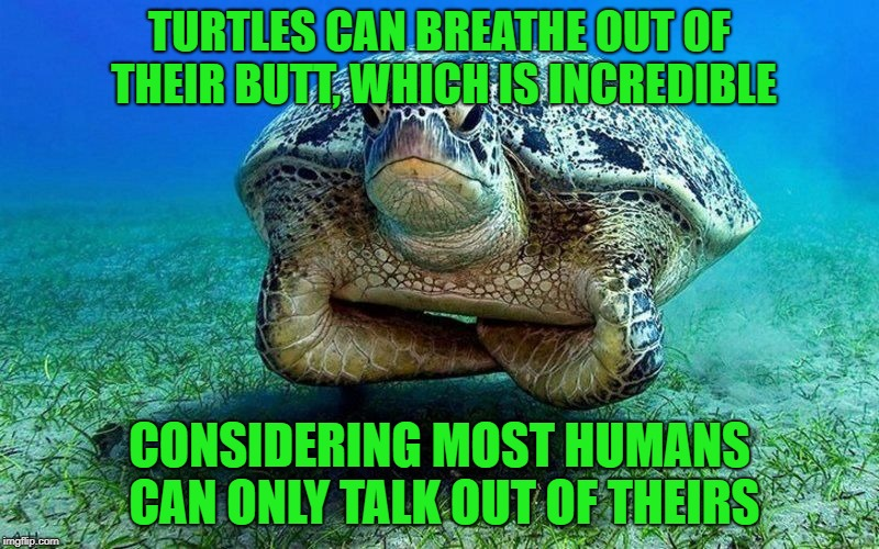 "New meaning to the term ""butt breath"" 