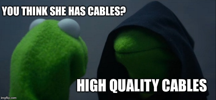 Evil Kermit Meme | YOU THINK SHE HAS CABLES? HIGH QUALITY CABLES | image tagged in memes,evil kermit | made w/ Imgflip meme maker