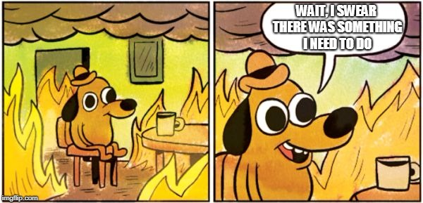 WAIT, I SWEAR THERE WAS SOMETHING I NEED TO DO | image tagged in burning dog | made w/ Imgflip meme maker