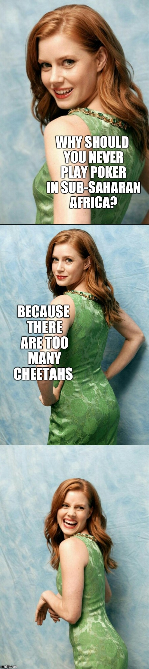 Amy Adams joke template  | WHY SHOULD YOU NEVER PLAY POKER IN SUB-SAHARAN AFRICA? BECAUSE THERE ARE TOO MANY CHEETAHS | image tagged in amy adams joke template,amy adams,jbmemegeek,bad puns,cheetah,poker | made w/ Imgflip meme maker