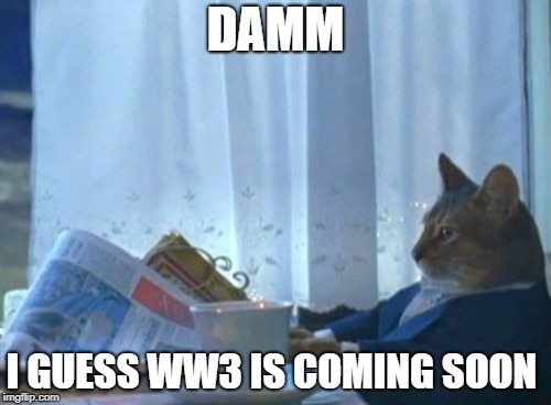 I Should Buy A Boat Cat Meme | DAMM I GUESS WW3 IS COMING SOON | image tagged in memes,i should buy a boat cat | made w/ Imgflip meme maker