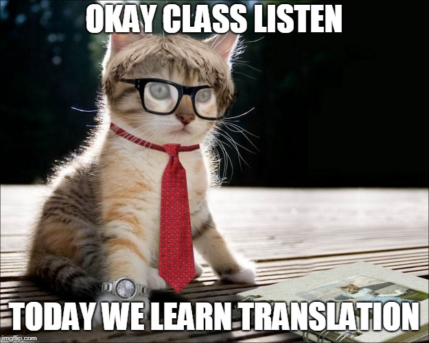 OKAY CLASS LISTEN TODAY WE LEARN TRANSLATION | image tagged in cat teacher | made w/ Imgflip meme maker