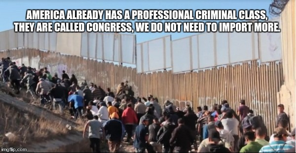 Illegal Immigrants | AMERICA ALREADY HAS A PROFESSIONAL CRIMINAL CLASS, THEY ARE CALLED CONGRESS, WE DO NOT NEED TO IMPORT MORE. | image tagged in illegal immigrants | made w/ Imgflip meme maker