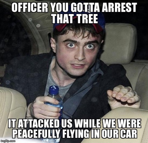 The tree attacked us | image tagged in flying car | made w/ Imgflip meme maker