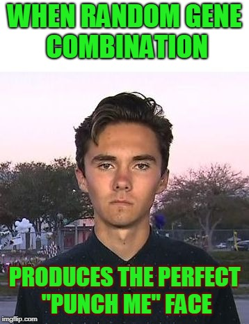 "David Hogg's ""Punch Me"" Face 
