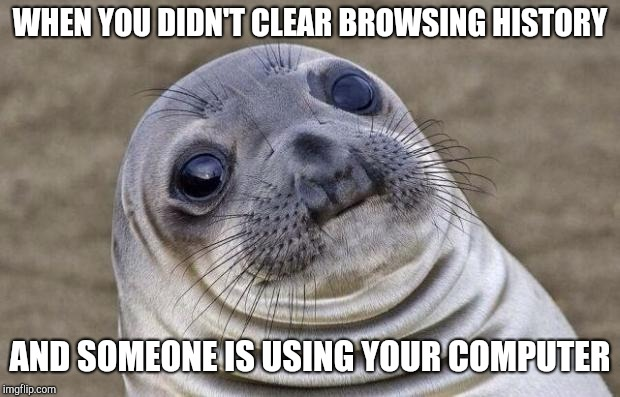 Awkward Moment Sealion Meme | WHEN YOU DIDN'T CLEAR BROWSING HISTORY AND SOMEONE IS USING YOUR COMPUTER | image tagged in memes,awkward moment sealion | made w/ Imgflip meme maker