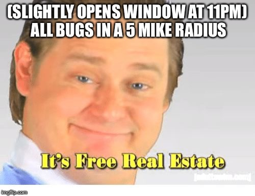It's Free Real Estate | (SLIGHTLY OPENS WINDOW AT 11PM) ALL BUGS IN A 5 MIKE RADIUS | image tagged in it's free real estate | made w/ Imgflip meme maker