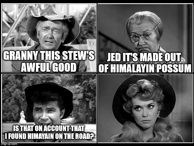 Some good stew | GRANNY THIS STEW'S AWFUL GOOD JED IT'S MADE OUT OF HIMALAYIN POSSUM IS THAT ON ACCOUNT THAT I FOUND HIMAYAIN ON THE ROAD? | image tagged in beverly hillbillies,redneck hillbilly,roadkill,funny,pun,bad pun | made w/ Imgflip meme maker