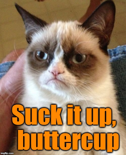 Grumpy Cat Meme | Suck it up,  buttercup | image tagged in memes,grumpy cat | made w/ Imgflip meme maker