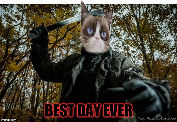 grumpy cat jason | BEST DAY EVER | image tagged in grumpy cat jason | made w/ Imgflip meme maker