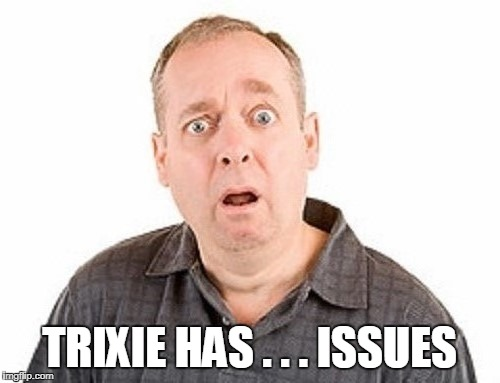 TRIXIE HAS . . . ISSUES | made w/ Imgflip meme maker