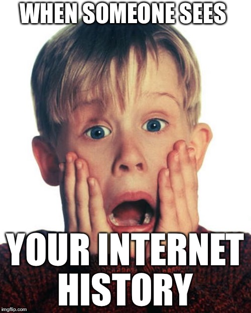 Home Alone Scream | WHEN SOMEONE SEES YOUR INTERNET HISTORY | image tagged in home alone scream | made w/ Imgflip meme maker
