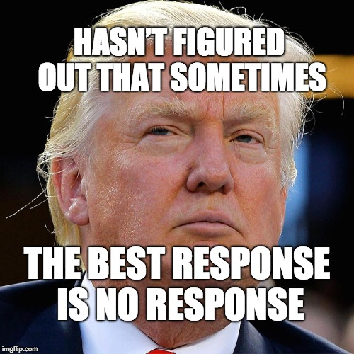 Hasn't figured out that sometimes the best response is no response. | HASN'T FIGURED OUT THAT SOMETIMES THE BEST RESPONSE IS NO RESPONSE | image tagged in trump,donald trump,maga,dumbass | made w/ Imgflip meme maker