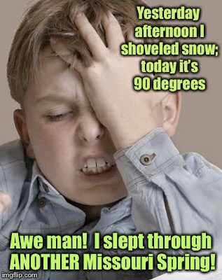 Missouri weather: you're drunk.  Go home. |  Yesterday afternoon I shoveled snow; today it's 90 degrees; Awe man!  I slept through ANOTHER Missouri Spring! | image tagged in memes,missouri,weather,snow,heat,overnight spring | made w/ Imgflip meme maker