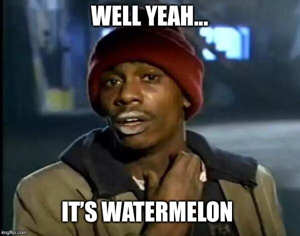 Y'all Got Any More Of That Meme | WELL YEAH... IT'S WATERMELON | image tagged in memes,y'all got any more of that | made w/ Imgflip meme maker