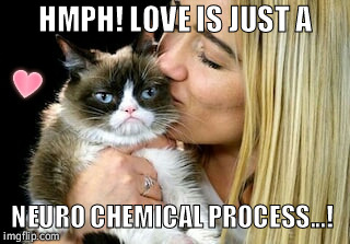 Grumpy valentines day to you too! | HMPH! LOVE IS JUST A NEURO CHEMICAL PROCESS...! | image tagged in grumpy cat,funny,love,kiss,heart,memes | made w/ Imgflip meme maker