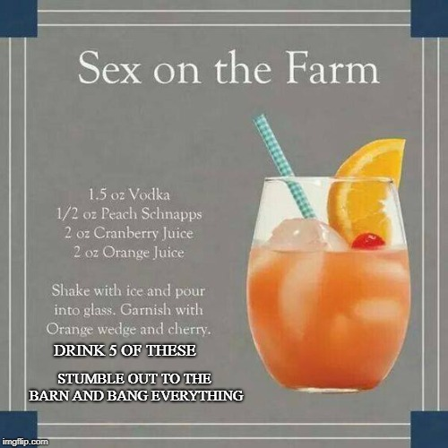 Boat drinks on the farm. | DRINK 5 OF THESE STUMBLE OUT TO THE BARN AND BANG EVERYTHING | image tagged in drinks | made w/ Imgflip meme maker