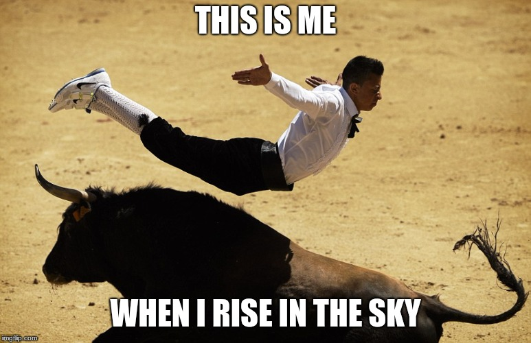 Bull Jumper | THIS IS ME WHEN I RISE IN THE SKY | image tagged in bull jumper | made w/ Imgflip meme maker