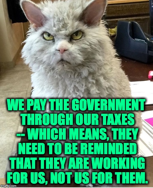 Pompous Albert | WE PAY THE GOVERNMENT THROUGH OUR TAXES -- WHICH MEANS, THEY NEED TO BE REMINDED THAT THEY ARE WORKING FOR US, NOT US FOR THEM. | image tagged in pompous albert | made w/ Imgflip meme maker