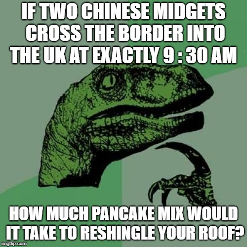 Philosoraptor | IF TWO CHINESE MIDGETS CROSS THE BORDER INTO THE UK AT EXACTLY 9 : 30 AM HOW MUCH PANCAKE MIX WOULD IT TAKE TO RESHINGLE YOUR ROOF? | image tagged in memes,philosoraptor | made w/ Imgflip meme maker