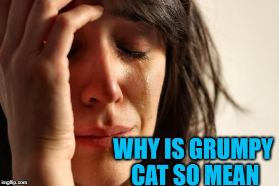 First World Problems Meme | WHY IS GRUMPY CAT SO MEAN | image tagged in memes,first world problems | made w/ Imgflip meme maker