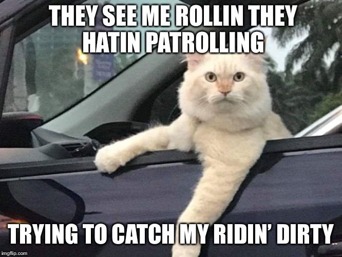 Gangsta Cat | THEY SEE ME ROLLINTHEY HATINPATROLLING TRYING TO CATCH MY RIDIN' DIRTY | image tagged in gangsta cat | made w/ Imgflip meme maker