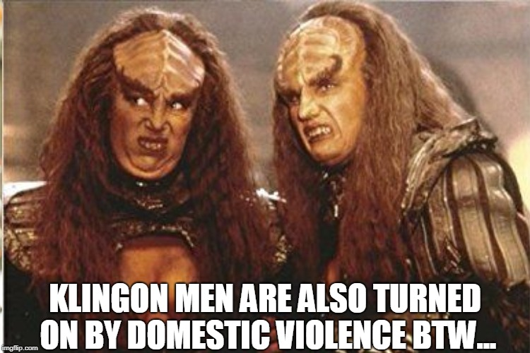KLINGON MEN ARE ALSO TURNED ON BY DOMESTIC VIOLENCE BTW... | made w/ Imgflip meme maker