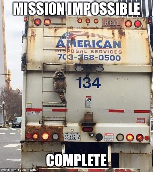 MISSION IMPOSSIBLE COMPLETE | image tagged in undercover racoon | made w/ Imgflip meme maker