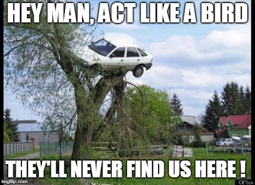 Secure Parking | HEY MAN, ACT LIKE A BIRD THEY'LL NEVER FIND US HERE ! | image tagged in memes,secure parking | made w/ Imgflip meme maker