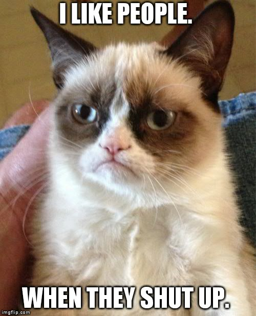 Grumpy Cat Meme | I LIKE PEOPLE. WHEN THEY SHUT UP. | image tagged in memes,grumpy cat | made w/ Imgflip meme maker