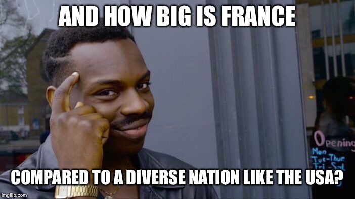 Roll Safe Think About It Meme | AND HOW BIG IS FRANCE COMPARED TO A DIVERSE NATION LIKE THE USA? | image tagged in memes,roll safe think about it | made w/ Imgflip meme maker