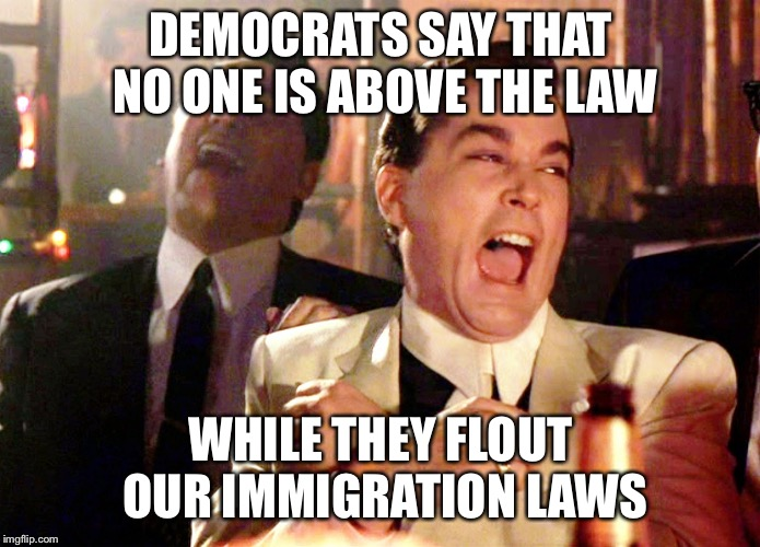 Good Fellas Hilarious Meme | DEMOCRATS SAY THAT NO ONE IS ABOVE THE LAW WHILE THEY FLOUT OUR IMMIGRATION LAWS | image tagged in memes,good fellas hilarious,democratic party,democrats,liberal logic,illegal immigration | made w/ Imgflip meme maker
