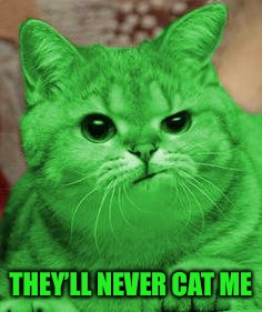 RayCat Annoyed | THEY'LL NEVER CAT ME | image tagged in raycat annoyed | made w/ Imgflip meme maker