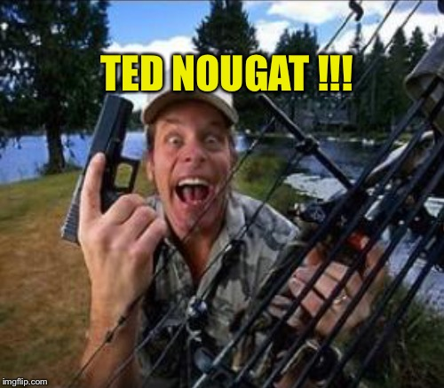 TED NOUGAT !!! | made w/ Imgflip meme maker