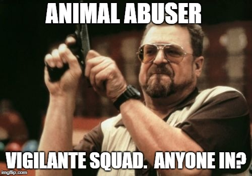 Am I The Only One Around Here Meme | ANIMAL ABUSER VIGILANTE SQUAD.  ANYONE IN? | image tagged in memes,am i the only one around here | made w/ Imgflip meme maker