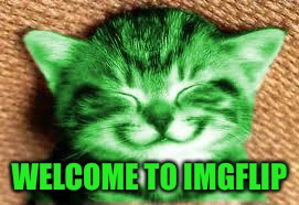 happy RayCat | WELCOME TO IMGFLIP | image tagged in happy raycat | made w/ Imgflip meme maker