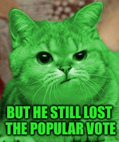 RayCat Annoyed | BUT HE STILL LOST THE POPULAR VOTE | image tagged in raycat annoyed | made w/ Imgflip meme maker