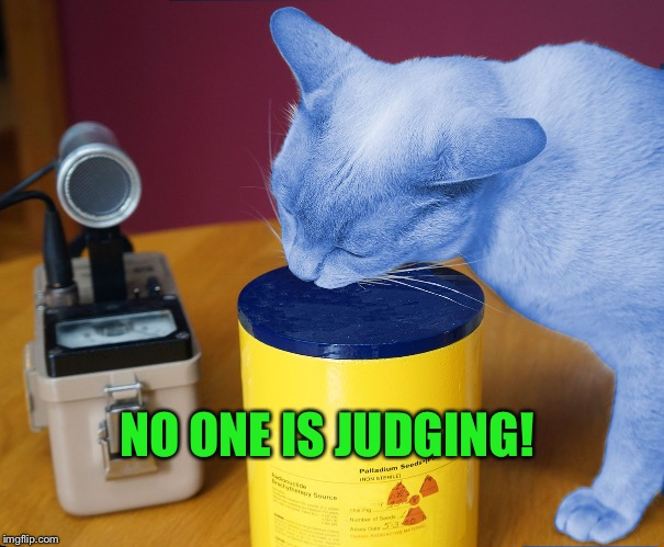 RayCat eating | NO ONE IS JUDGING! | image tagged in raycat eating | made w/ Imgflip meme maker