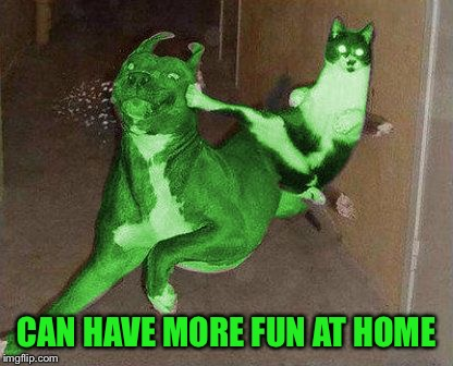 RayCat kicking RayDog | CAN HAVE MORE FUN AT HOME | image tagged in raycat kicking raydog | made w/ Imgflip meme maker