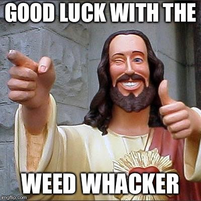 Jesus | GOOD LUCK WITH THE WEED WHACKER | image tagged in jesus | made w/ Imgflip meme maker