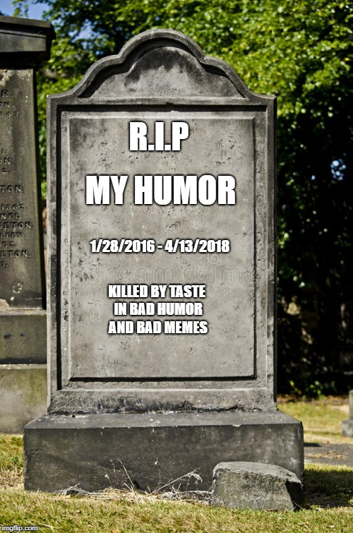 It's just a meme bro! | R.I.P MY HUMOR 1/28/2016 - 4/13/2018 KILLED BY TASTE IN BAD HUMOR AND BAD MEMES | image tagged in grave | made w/ Imgflip meme maker