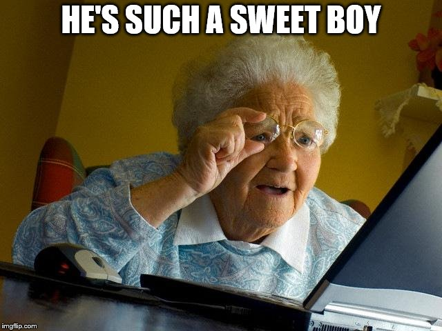 Grandma Finds The Internet Meme | HE'S SUCH A SWEET BOY | image tagged in memes,grandma finds the internet | made w/ Imgflip meme maker