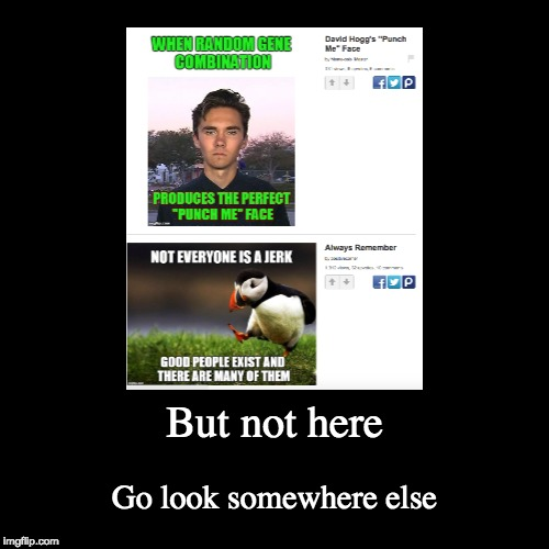 :DDDDDDDDDDDDDDDD | But not here | Go look somewhere else | image tagged in funny,demotivationals,david hogg | made w/ Imgflip demotivational maker