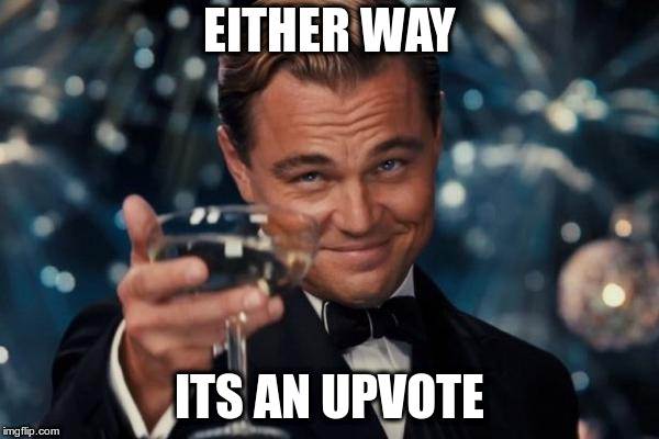 Leonardo Dicaprio Cheers Meme | EITHER WAY ITS AN UPVOTE | image tagged in memes,leonardo dicaprio cheers | made w/ Imgflip meme maker