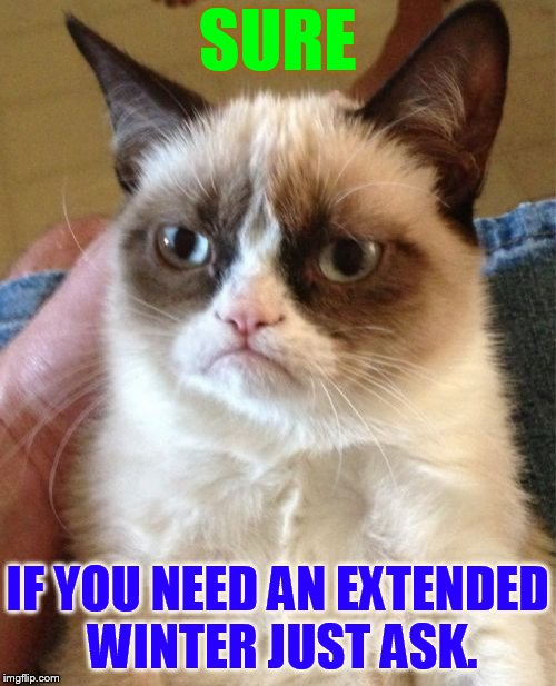 Grumpy Cat Meme | SURE IF YOU NEED AN EXTENDED WINTER JUST ASK. | image tagged in memes,grumpy cat | made w/ Imgflip meme maker