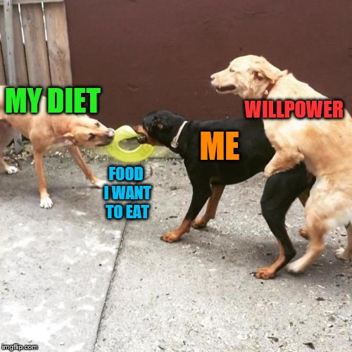 Why can't pasta be good for us? | MY DIET FOOD I WANT TO EAT ME WILLPOWER | image tagged in this is my life,memes,diet,willpower,self-control | made w/ Imgflip meme maker