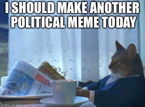 I Should Buy A Boat Cat Meme | I SHOULD MAKE ANOTHER POLITICAL MEME TODAY | image tagged in memes,i should buy a boat cat | made w/ Imgflip meme maker