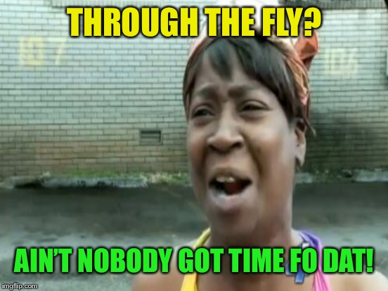 THROUGH THE FLY? AIN'T NOBODY GOT TIME FO DAT! | made w/ Imgflip meme maker